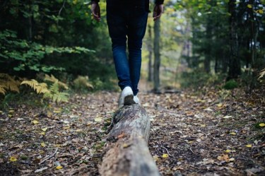 wood-691629__340